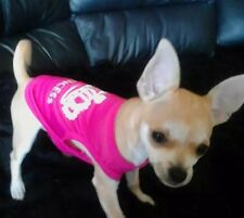 Chihuahua Puppy Size XSmall Pink Princess With White Letters Top Dog Clothes