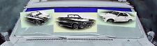 Buick Special GS400 Skylark 2D Hardtop Coupé Cabrio 1966 - 1967 Frontscheibe