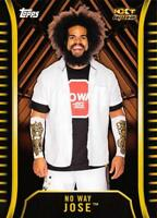 2018 Topps WWE NXT Base Parallels Pick From List (All Sets Included)