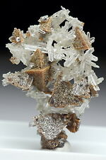 Sharp Genthelvite Cluster Intergrowth With Quartz #BOX11-08 Inner Mongolia China