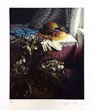 """DOUGLAS HOFMANN """"MORNING LIGHT (THE MOODS OF LIGHT PORTFOLIO)"""" 1983   SIGNED"""