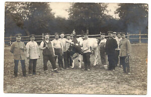 Foto Ak Soldaten mit Kuh Landsturm Infanterie Bataillon Sangerhausen 1915