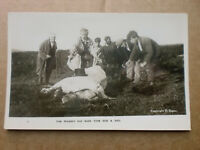 Tom Pearse's Old Mare Took Sick & Died RP Real Photograph Postcard E DUNN Horse