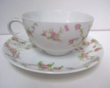 Thomas Bavaria Tea Cup & Saucer Gold Accent Pink Flower Green Leaves White