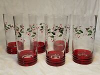 Pfaltzgraff Christmas Winterberry Set of 6 cooler Glass Tall Tumblers 16oz +