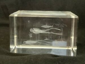 MODERN DEEP SEA DIVER WITH DEEP SEA PLANT Laser 3D Etched Crystal Ornament Gift