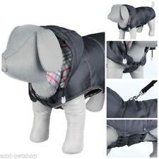 Vêtements et chaussures gris en polyester pour chien