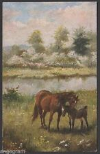 Kent Animals Collectable Artist Signed Postcards