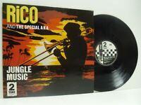 RICO & THE SPECIAL AKA jungle music 12 INCH EX/EX, CHS TT 12 19, vinyl, uk, ska,