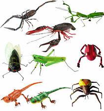 Caripe Kühlschrankmagnete Tiere Pinnwand Motiv Insekten Käfer Skorpion Gecko