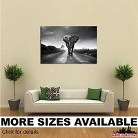 Wall Art Canvas Picture Print Milky Way South Africa 3.2