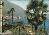 AA5607 Verbania - Provincia - Cannobio - Panorama - Cartolina postale - Postcard