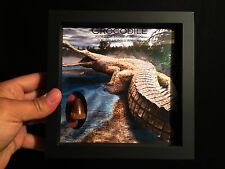 Frame / Cadre membrane silicone avec Dent Crocodile fossile! tooth fossil frame!