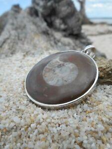 Large Fossilised Ammonite 925 Sterling Silver Pendant