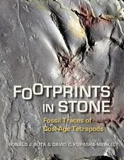 Footprints in Stone: Fossil Traces of Coal-Age Tetrapods