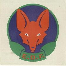 Scout Eclaireurs de France EDF Tête de loup sur papier 15 x 15