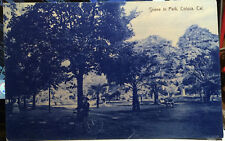 COLUSA, CALIFORNIA Post Card 1905-15, Kid & Bicycle, PARK SCENE