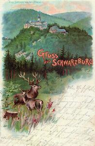 Gruss aus Schwarzburg, Das Schloss von der Wiese, Litho 1901