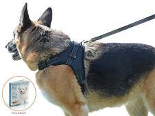 Dog Harness S M L XL Adjustable Collar Labrador Husky Malamute German Shepherd