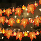 Autumn Maple Leaf Halloween Pumpkin Wreath Home Decor Thanksgiving Fairy Lights