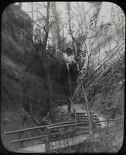 Glass Magic Lantern Slide SHANKLIN CHINE PATH C1900 PHOTO IOW ISLE OF WIGHT