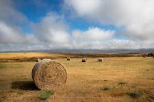 Photography Print of Hay Bale on Open Prairie in South Dakota