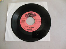 MAGNIFICENTS why did she go /up on the mountain  COLLECTABLES 45