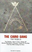 The Cairo Gang - Tiny Rebels CASSETTE Similar to Angel Olsen Bonnie Prince Billy