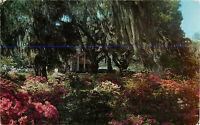 Postcard South Carolina Low-Country Plantation