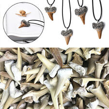 Animal Shark Tooth Fossil Natural Material  DIY Bacarat Necklace Pendant Making