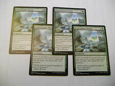 4x MTG Premonizione Silvana-Sylvan Scrying Magic EDH BFZ Battle for Zendikar x4