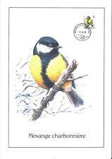 FDC 2460 - Oiseau Buzin sur gravure format A4 !