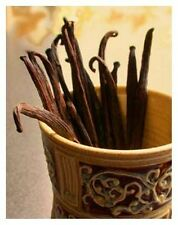 Vanilla Fragrance Oil Candle/Soap Making Supplies *Free Shipping*