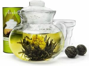 PRIMULA GLASS TEA POT WITH LOOSE TEA INFUSER 40 OZ 5 CUP
