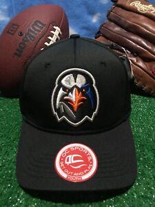 Youth ABERDEEN IRONBIRDS Minor League Replica Baseball  Hat MiLB Cap h33