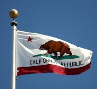 3 x 5 ft California State Flag Grommets Indoor Outdoor America Polyester Banner