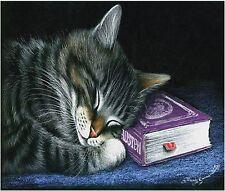 SLEEPING GRAY TIGER CAT  IMAGE COMPUTER MOUSE PAD 9 X 7