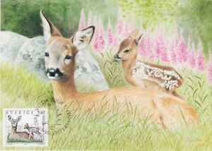 Roe Deer and Baby Kid Cute Wildlife Nordic Sweden Mint Maxi FDC Card 1992
