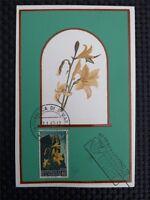 SAN MARINO MK 1967 FLORA BLUMEN FLOWERS MAXIMUMKARTE MAXIMUM CARD MC CM c1381