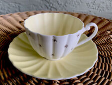 """Vintage Shelley Cup & Saucer 13774 """"Pole Star"""" MINTY"""