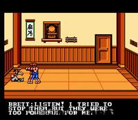 Double Dragon III 3 - Rare Fun NES Nintendo Game