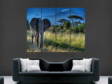 ELEPHANT SAFARI AFRICA  ART HUGE  LARGE PICTURE POSTER GIANT