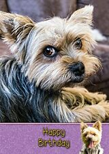 Yorkie/Yorkshire Terrier Dog Handmade Birthday Card 8x6""