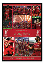 Liverpool FC Champions Winning Season Poster FRAMED CORK PIN BOARD With Pins