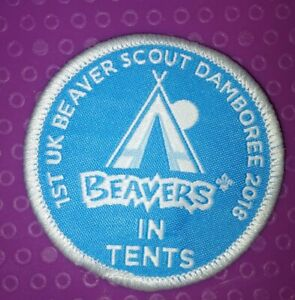 1st Beaver scout Damboree 2018 in tents scout badge
