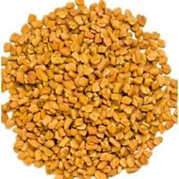 Fenugreek Methi Seed Organic Trigonella Foenu Whole Methi Seed - Free Ship