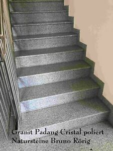 Treppen Platten Trittstufen Stellstufen Granit Marmor poliert geflammt Setzstufe