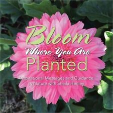 Bloom Where You Are Planted: Inspirational Messages and Guidance in Nature with