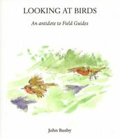 NEW Looking at Birds John Busby birding art painting techniques ornithology book