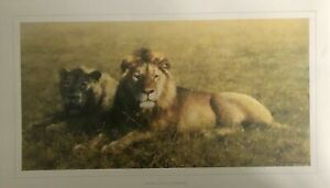 David Shepherd LIMITED EDITION print 'Serengeti Friends' from Archive Collection
